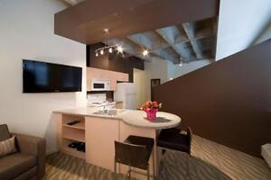 FULLY FURNISHED - The Galen Lofts - Pool, Gym & More! Edmonton Edmonton Area image 2