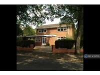 6 bedroom house in Jesson Road, Walsall, WS1 (6 bed)