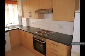 1 bedroom flat in Croydon Road, Middlesbrough, TS1 (1 bed)