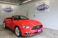 2015 Ford Mustang GT >>>0% EXTENDED!50th Anniversar