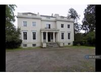 2 bedroom flat in Trehill House, Exeter, EX6 (2 bed)