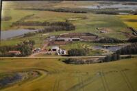 Mixed Farm/Grain & Cattle Ranch For Sale