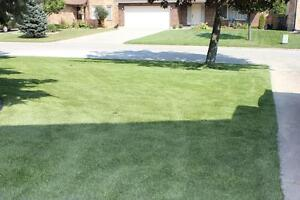 Beautiful Artificial Turf Say goodbye to Lawn Mower for good!