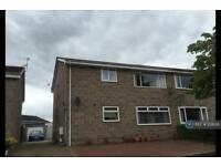 2 bedroom flat in Kinmundy Drive, Aberdeen, AB32 (2 bed)