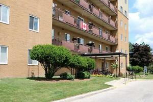 **Quiet & Convenient 1 Bedroom Apartment for Rent in Sarnia**