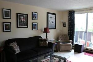 Spacious 3 Bedroom Mount Forest Apartment for Rent (Non-Smoking)
