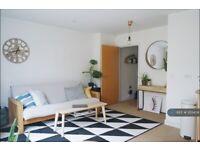 1 bedroom flat in Comercial Street, Birmingham, B1 (1 bed) (#1213454)