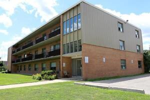 2 bedroom apartment for rent in Sarnia near parks AND transit!