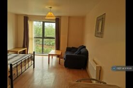 1 bedroom flat in Red Bank, Manchester, M4 (1 bed) (#1176561)
