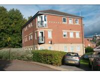 1 bedroom flat in Broom Green, Sheffield , S3 (1 bed)