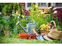 Gardening & landscaping *Great price to YOU*