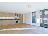 Two bedroom two bathroom modern apartment in Hackney Central