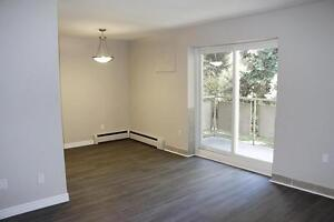 **NEWLY RENOVATED** Niagara Falls 1 Bedroom Apartment for Rent