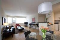 Perfect for students/professionals: 2 bed Spring Garden, June 1