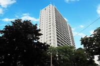 Large 1 bedroom apt at 22 Close Ave
