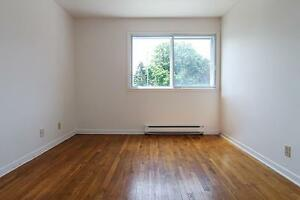 1 bedroom in the heart of St. John's!