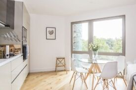A Stylish One Bedroom Apartments Close To Canning Town Station