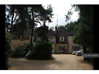 1 bedroom flat in Lakeside, Bracknell, RG40 (1 bed)