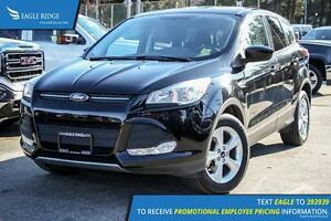 2016 Ford Escape SE Satellite Radio and Backup Camera