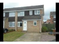 3 bedroom house in The Pyghtles, Wollaston, Wellingborough, NN29 (3 bed)