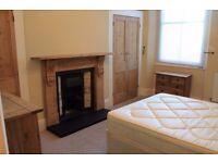Lovely 1-bed flat (West Hoe)