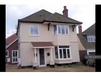2 bedroom flat in Friarscroft Lane, Wymondham, NR18 (2 bed)