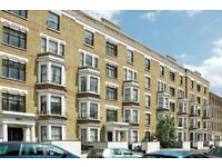 Lovely 1 / 2 bedroom Flat in Hackney Central. Ideal for a profesional couple in need of large flat