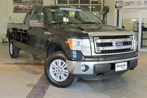 2014 Ford F-150 XLT 8 Pieds