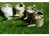 4 vintage watering cans