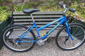 Bikes Raleigh Special Edition Jamtland ( excellent condition )