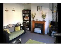 1 bedroom flat in Edith Street, Northampton, NN1 (1 bed)