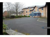 1 bedroom in Bailey's Lane, Tipton, DY4