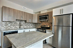 NEW! Beautiful House for Rent! Carleton U! Rideau Canal!