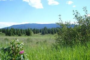 5 ACRE LOT ONLY $34,900 - VENDOR FINANCING