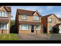 3 bedroom house in Meadowbank, Dudley, Cramlington, NE23 (3 bed)