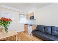 Modern one bedroom flat in Edgware Road (1C/ER)
