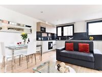 Stunning 2bed/2bath apartment*Tower Bridge area*3 months minimum*Fully furnished