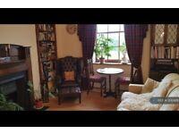 1 bedroom flat in Oxford Street, Edinburgh, EH8 (1 bed) (#1242426)