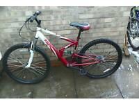 Apollo fs 26 mountain bike