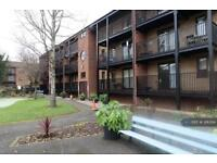 1 bedroom flat in Lenton, Nottingham, NG7 (1 bed)