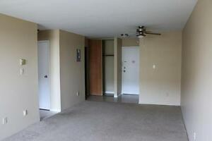 1 Bedroom Apartment for Rent in Kingston at John Counter Place Kingston Kingston Area image 10