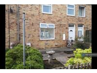 2 bedroom house in Sycamore Street, Ashington, NE63 (2 bed)