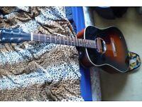Custom Electro Acoustic Guitar