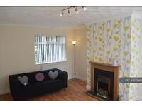 3 bedroom house in Thomas Road, Doncaster, DN7 (3 bed)