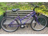 Bikes Raleigh Zing mountain bike