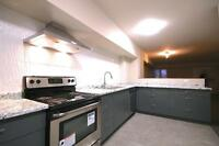 COMPLETELY RENOVATED CONDO $1480 PLUS IN S WINDSOR
