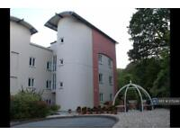 2 bedroom flat in Brown's Hill, Cornwall, TR10 (2 bed)