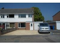 3 bedroom house in Border Road, Poole, Dorset, BH16 (3 bed)