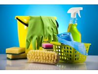House,office domestic cleaning service