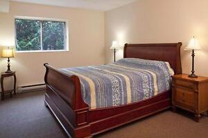 GRAND appartement à 1 chambre à louer à Hull : Gatineau, QC Gatineau Ottawa / Gatineau Area image 4